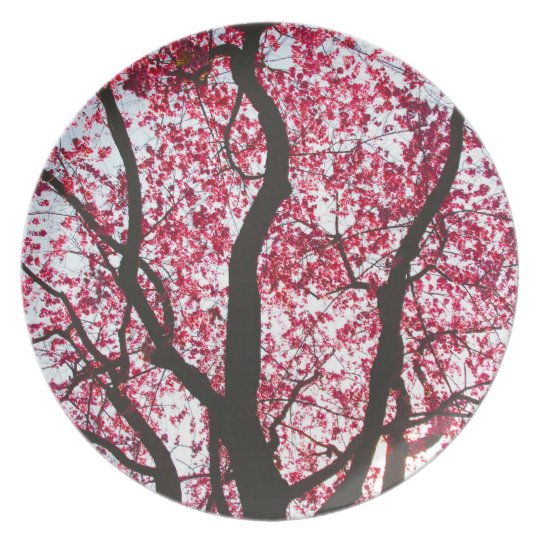 Pink Weeping Willow Tree Plate