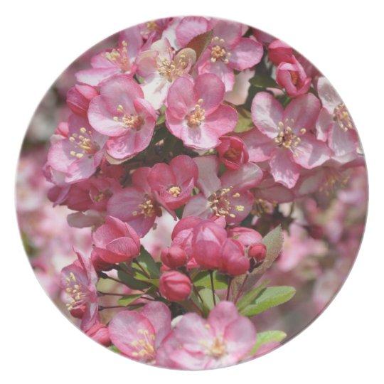Pink & White Dogwood Tree Flowers Plate
