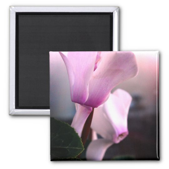 Pink White Flowers Photo Square Magnet