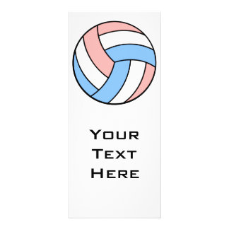 pink white pastel blue volleyball full color rack card