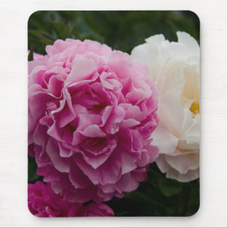 Pink & White Peonies | Rosa & Weiße Pfingstrosen Mouse Pad