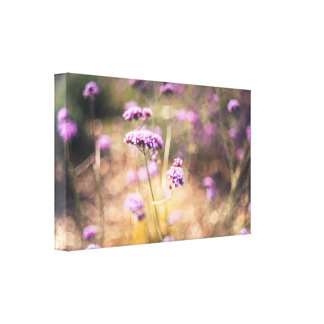 Pink wild flowers canvas print
