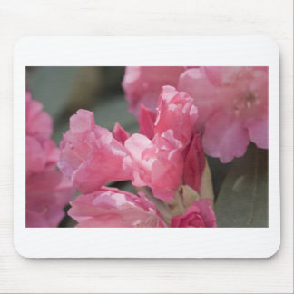Pink wild flowers mousepad