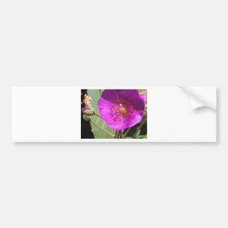 Pink wildflower bumper sticker