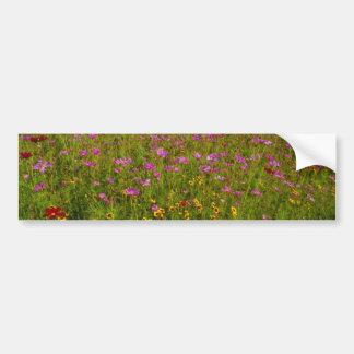 Pink Wildflowers, central Virginia flowers Bumper Sticker