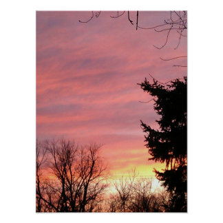 Pink Winter Sunset Poster