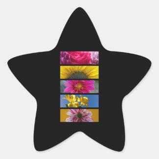Pink & Yellow Macro Flowers Star Sticker