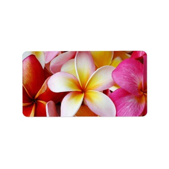 Pink Yellow  White Mixed Plumeria Flower Address Label