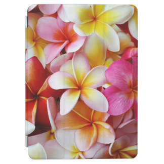 Pink Yellow  White Mixed Plumeria Flower iPad Air Cover