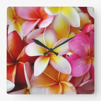Pink Yellow  White Mixed Plumeria Flower Square Wall Clock