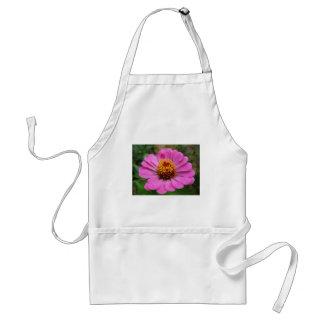 pink zinnia adult apron