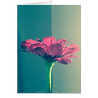 Pink Zinnia by Cynthia Turner Designs Card