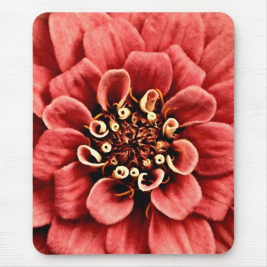 pink zinnia detail is cheery but not too bright mouse mat