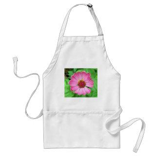 Pink Zinnia Garden flower Standard Apron