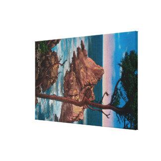 Pinnacle Point, Point Lobas State Park Canvas Print