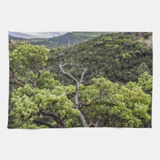 Pinnacles and Tree Towels
