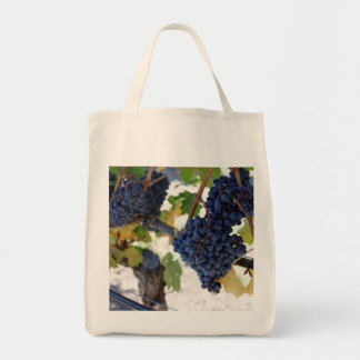 pinot noir grapes on vine tote