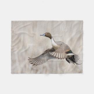 Pintail Drake Taking Flight Fleece Blanket