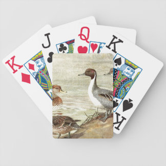 Pintail Duck Birds Wildlife Animal Playing Cards