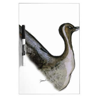 pintail duck, tony fernandes dry erase board