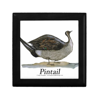 Pintail duck, tony fernandes gift box