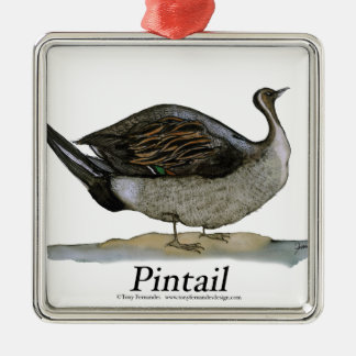 Pintail duck, tony fernandes Silver-Colored square decoration