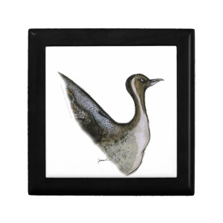 pintail duck, tony fernandes small square gift box