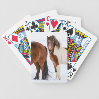 Pinto Colored Icelandic Horse Bicycle Playing Cards