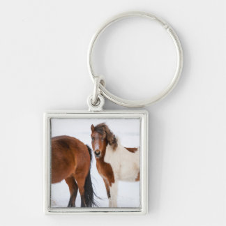 Pinto Colored Icelandic Horse Key Ring