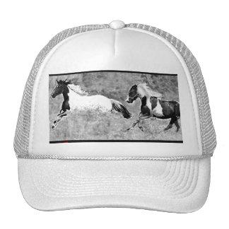 Pinto Horses hat