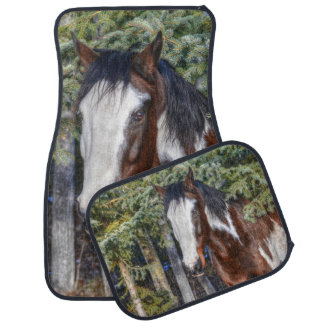 Pinto Paint Stallion & Evergreen Trees Car Mat