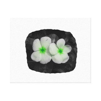 Pinwheel green circle  flower cutout gallery wrapped canvas