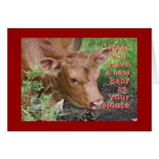 Pinzgauer Baby-customize Greeting Card