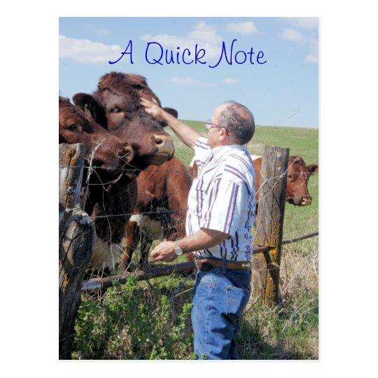 Pinzgauer Bull & Cows- customise Postcard