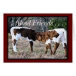 Pinzgauer Calves- AnyOccasion card-customise Greeting Card