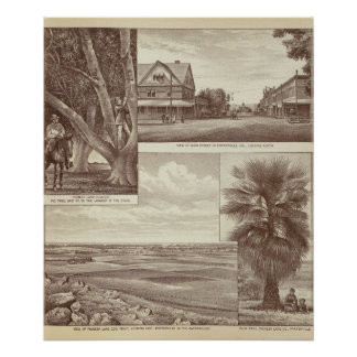 Pioneer Land Co tract, Porterville Poster
