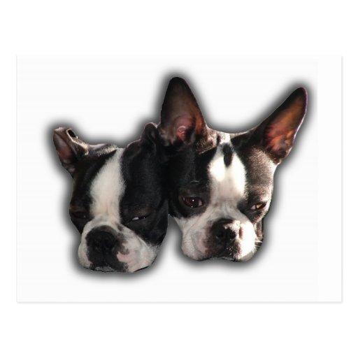 piper-pinocchio pair postcard