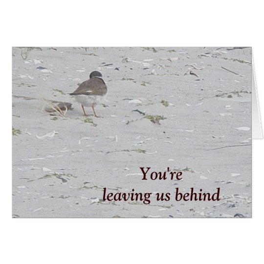 Piping Plover Good-bye From Group Card
