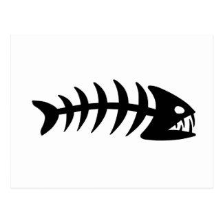 Piranha Fish Bone Postcard
