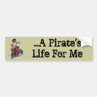 Pirate And Treasure Bumper Sticker