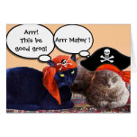 PIRATE CATS AND ANTIQUE PIRATES TREASURE MAPS