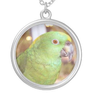 Pirate,  the True Parrot Pendants