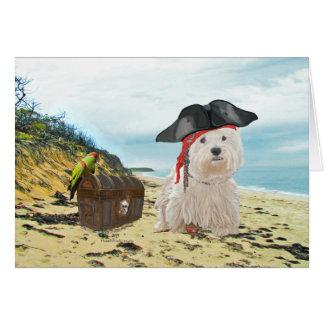 Pirate Westie Card