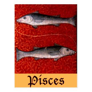 Pisces2 Postcard