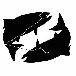 Pisces Constellation/Zodiac Photo Sculpture
