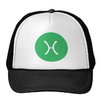 PISCES TEE CAP