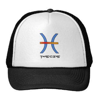 Pisces Zodiac sign hat