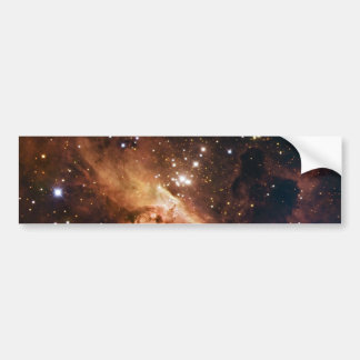 Pismis 24 brown starry sky bumper sticker