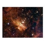 Pismis 24 brown starry sky post cards