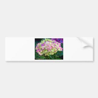 Pistachio Color Hydrangea Bumper Sticker